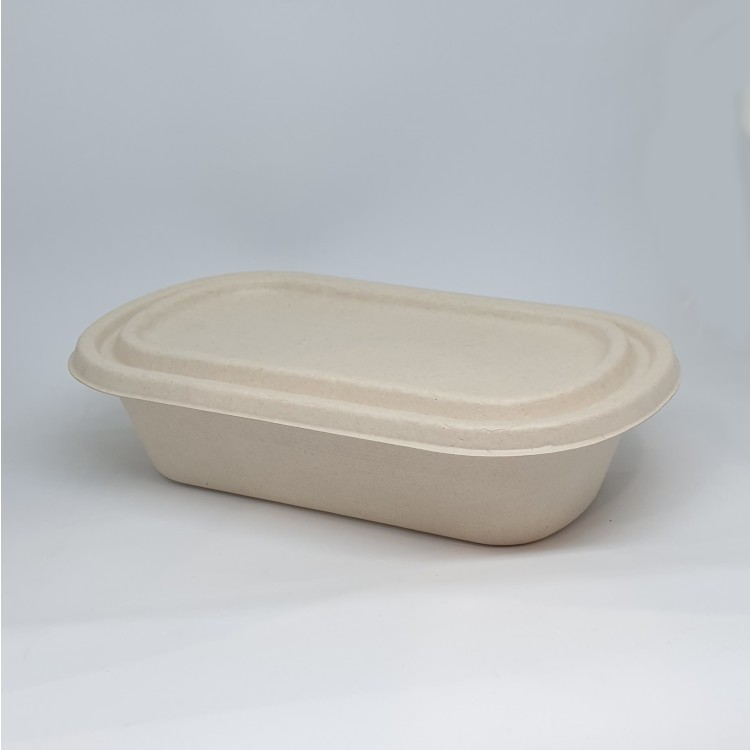 800ml Bagasse Snack Box